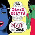 Shot Me Down (Feat. Skylar Grey) - 페이지 이동