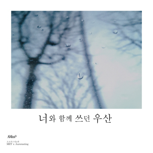 [Single] Aurorasting & MET – I'm In the Rain With You