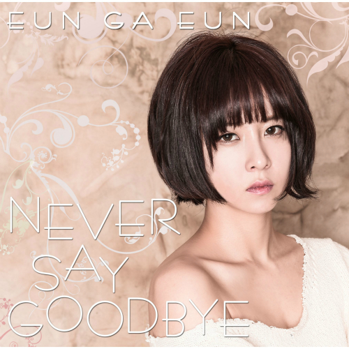 Never Say Goodbye 앨범이미지