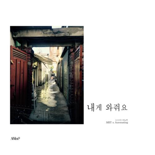 [Single] Aurorasting & MET – Home