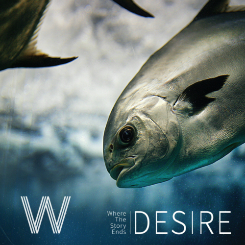 [EP] W (Where The Story Ends) – Desire