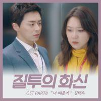 질투의 화신 OST Part.8 앨범 이미지