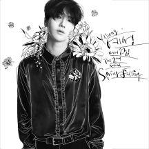 Spring Falling - The 2nd Mini Album 앨범이미지