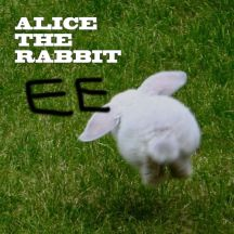 Alice The Rabbit 앨범이미지