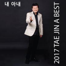 2017 TAE JIN A BEST 내아내 앨범이미지