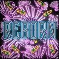 REBORN - 페이지 이동