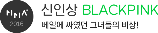 MMA2016 신인상 BLACKPINK 베일에 싸였던 그녀들의 비상!