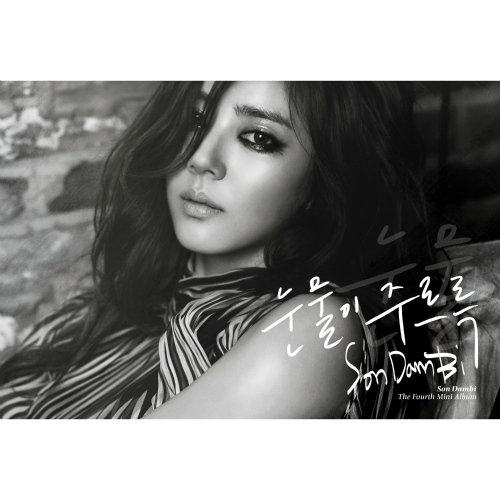 Son Dam Bi – Dripping Tears – EP