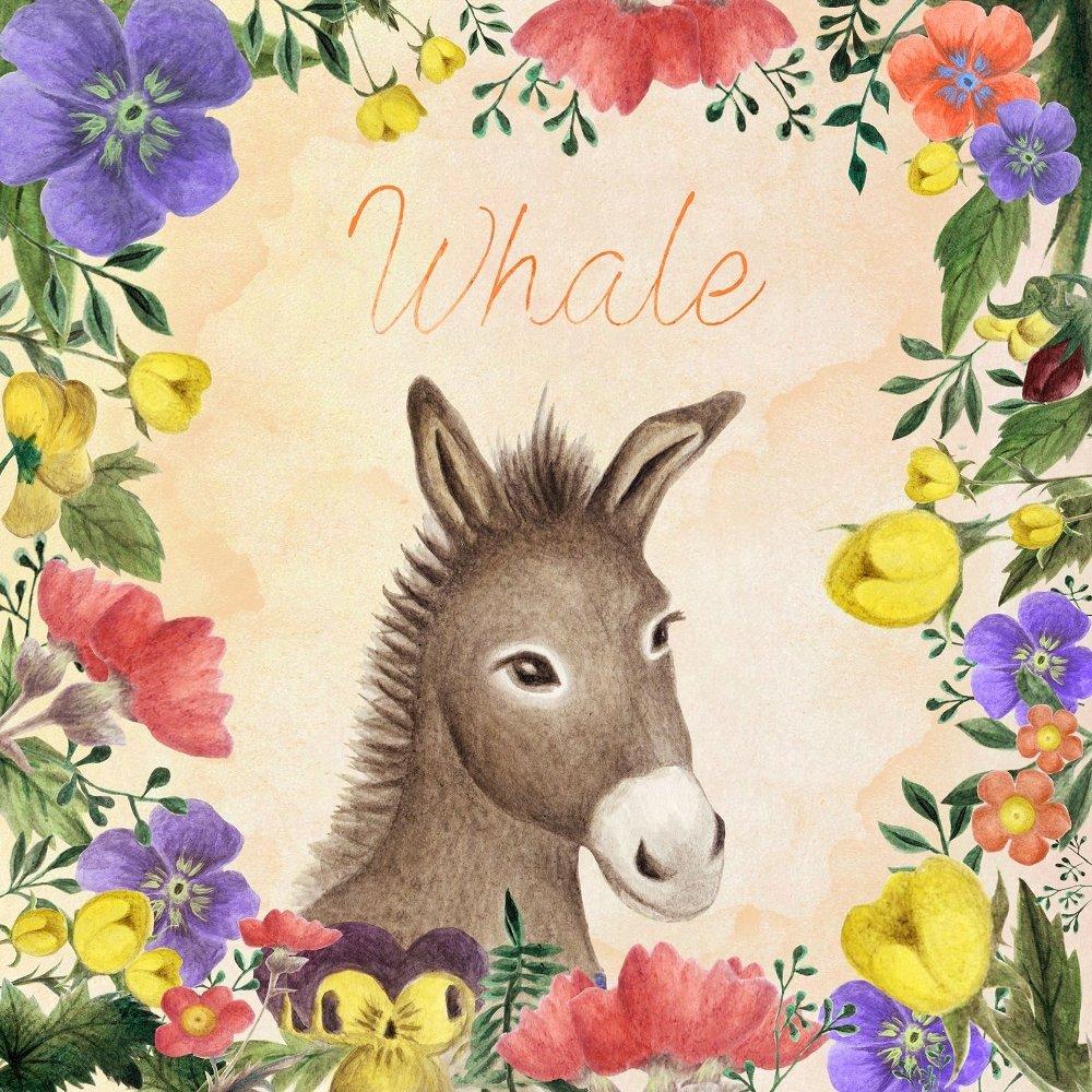 WHALE – Donkey – Single