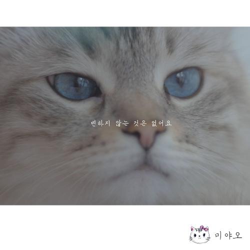 MIYAO – Everything changes – Single