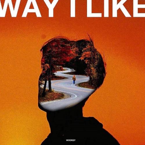 Wooks – Way I Like – Single