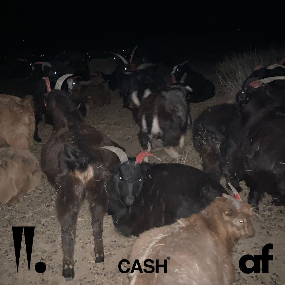Woo Won Jae – CASH – Single (ITUNES MATCH AAC M4A)
