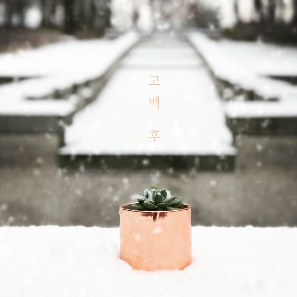 Park Ki Young – After confession – Single