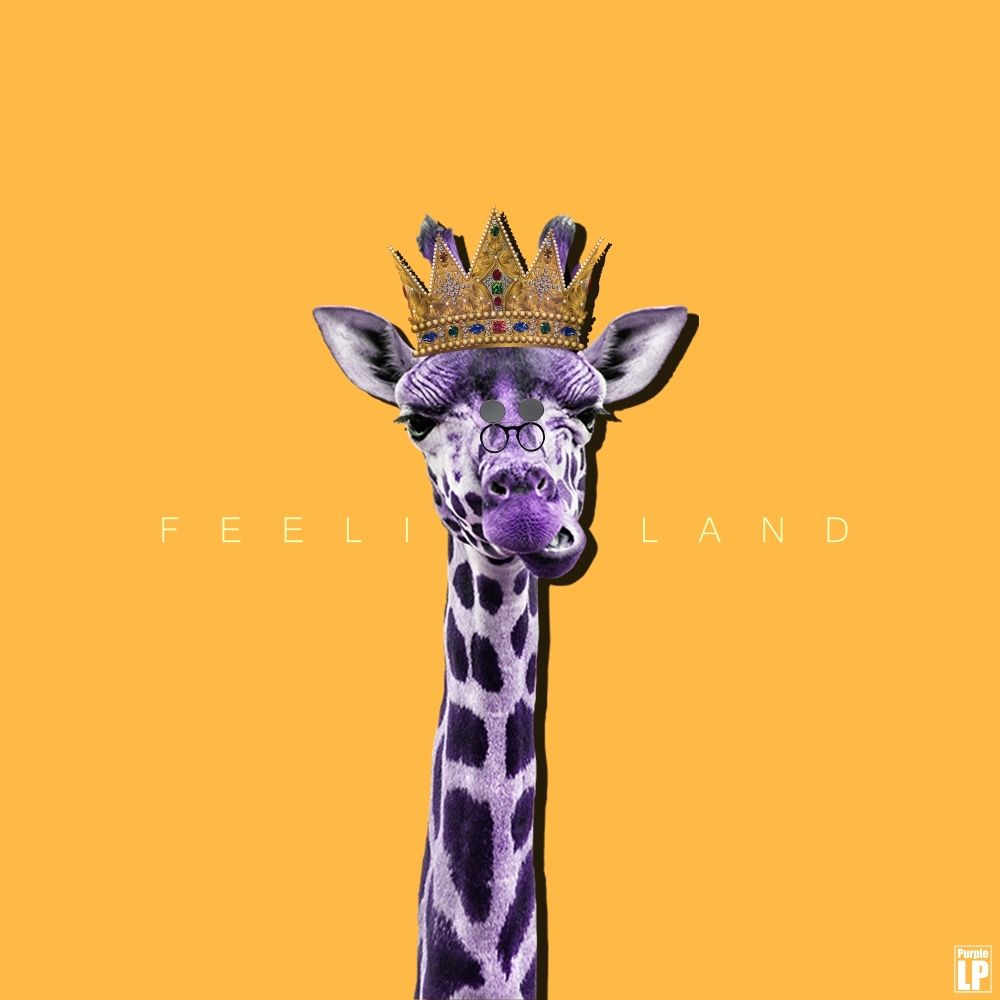 Purple LP – Feeling Land – EP