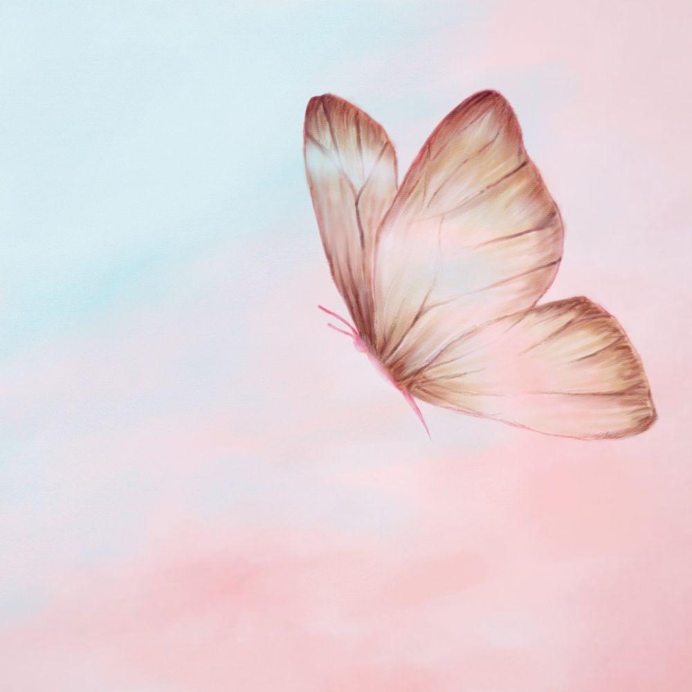 Seo Duck – Butterfly – Single