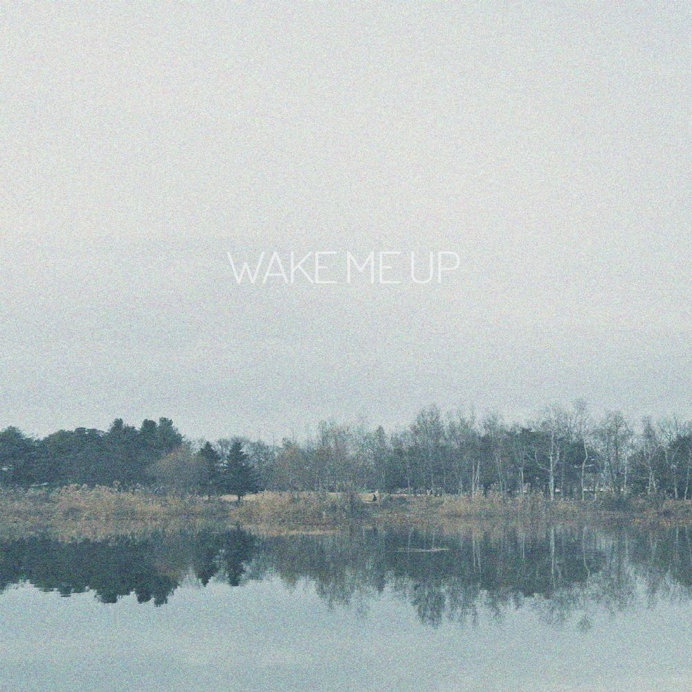 E the – Wake Me Up – Single