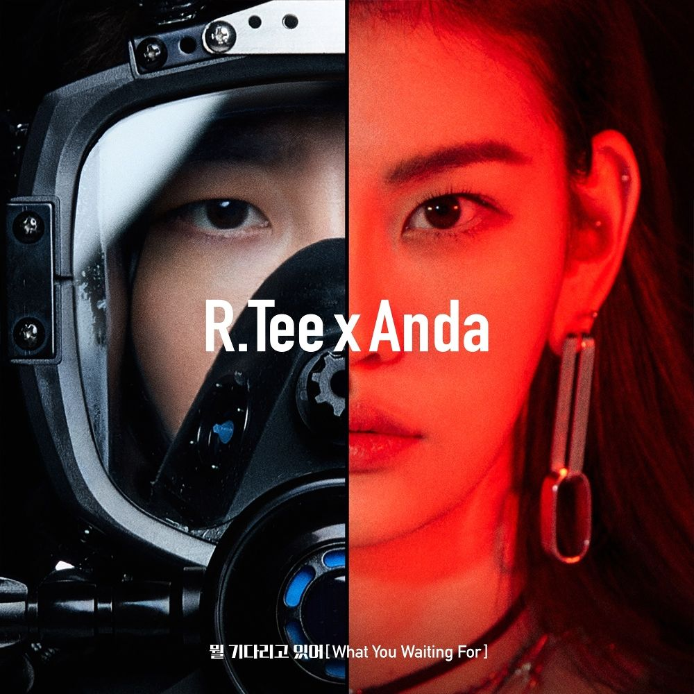 R.Tee, Anda – What You Waiting For – Single (ITUNES PLUS AAC M4A)
