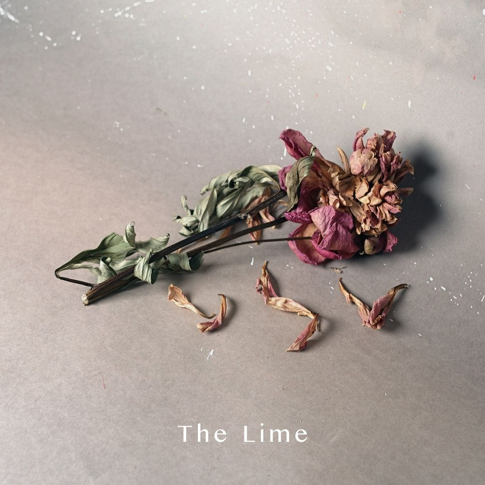 The Lime – We've been walking – Single