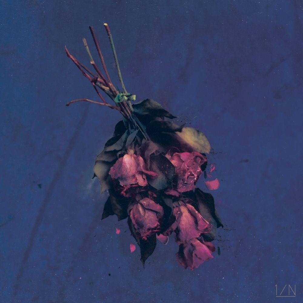 1/N – 새벽에 피는 꽃 – Single