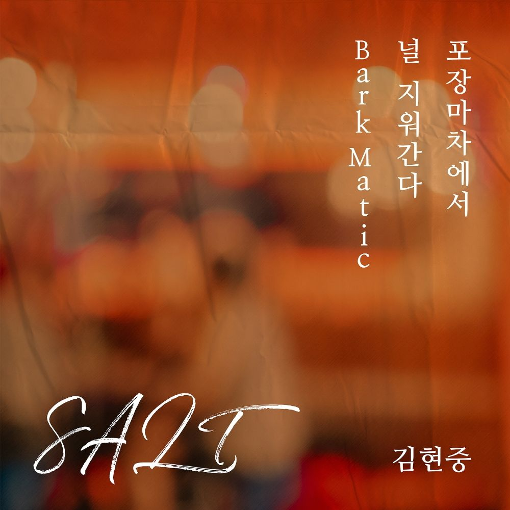 Kim Hyun Joong – SALT – Single