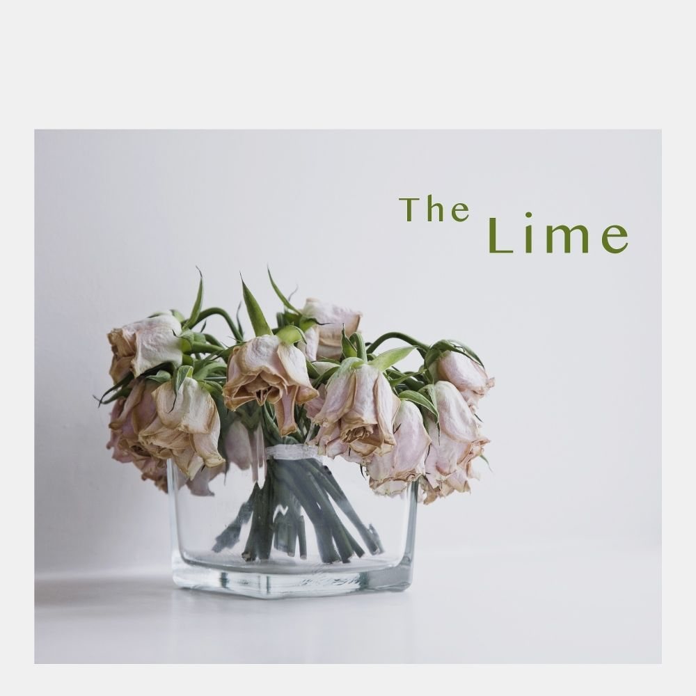 The Lime – Break Up – Single